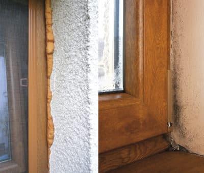 Nespravna montaz, Plesne v okolí okien