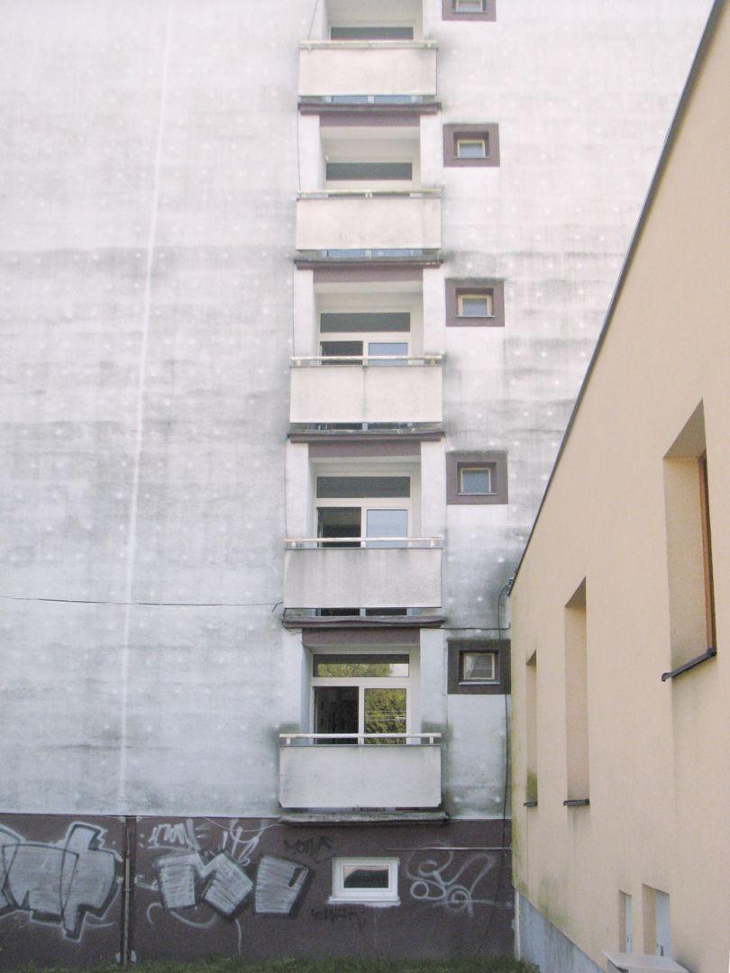 Plesne na fasadach