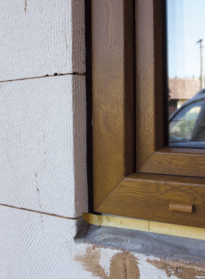 Spravna montaz, Plesne v okolí okien