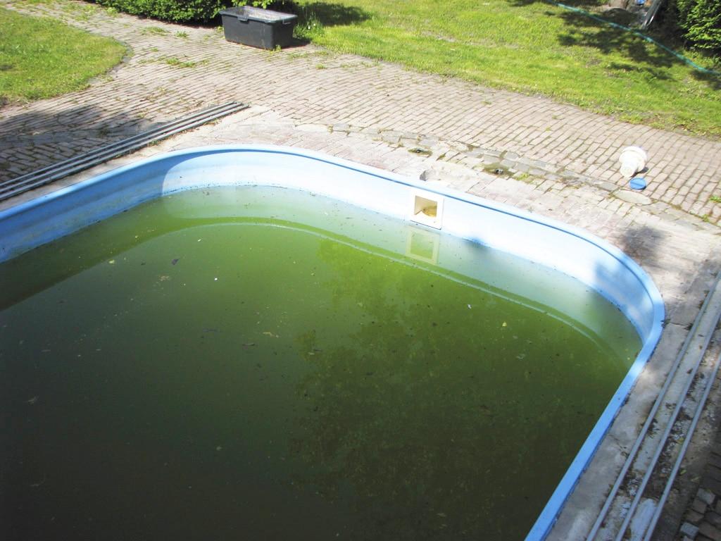 Ako teda pripraviť prezimujúcu bazénovú vodu na sezónu