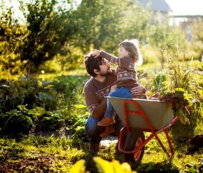 Dva najdôležitejšie kroky pre zazimovanie záhrady