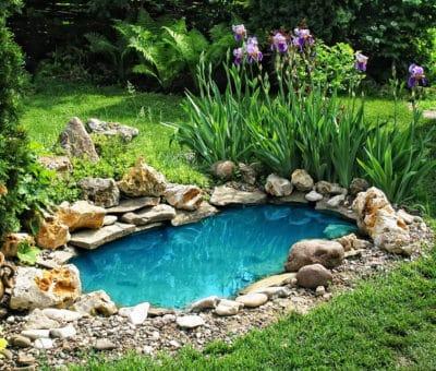 Ako si vytvoriť záhradné jazierko