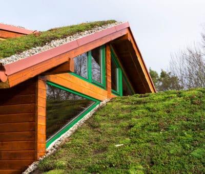 Vegetačné strechy sú veľkým benefitom nielen v meste