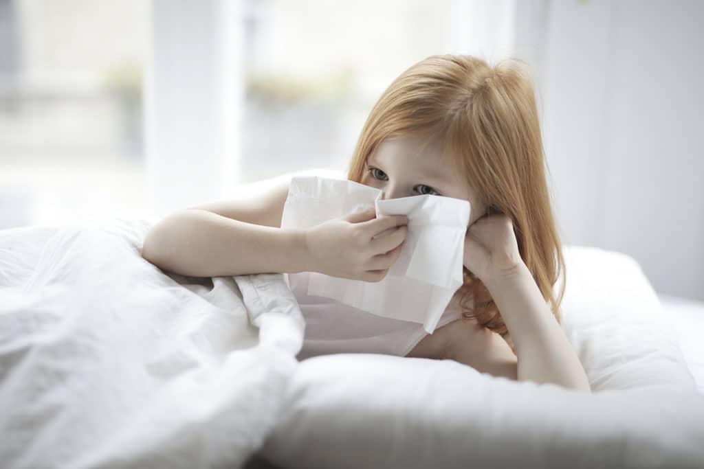 Ako sa zbaviť alergénov v byte Naučte sa s nimi bojovať, zdravie, cisty vzduch