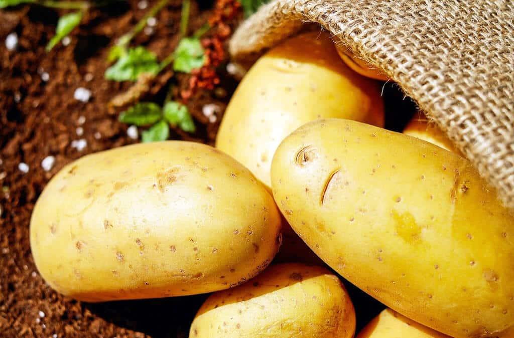 Vyrobte si vlastné hnojivo bez námahy 3 časť, zemiaky, exterier, zahrada, hnojiva